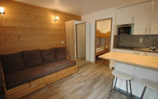 Grepon 4, chamonix accommodation, summer & winter season rental