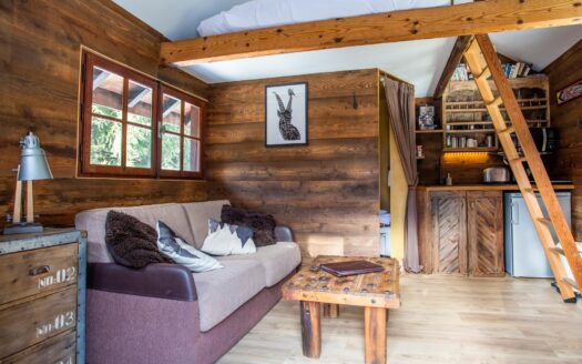 Mazot 715 , chamonix accommodation, summer & winter season rental
